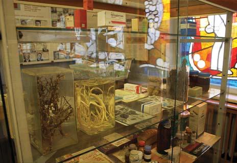 Музей Інституту геронтології